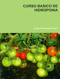 CURSO BASICO DE HIDROPONIA