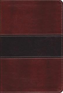 BIBLIA DEL PESCADOR (LETRA GRANDE. REVISADA Y...