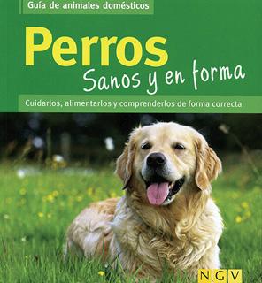 PERROS SANOS Y EN FORMA