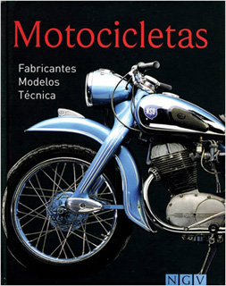 MOTOCICLETAS (MINI NGV)