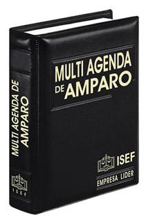 MULTI AGENDA DE AMPARO 2021 (EJECUTIVO)