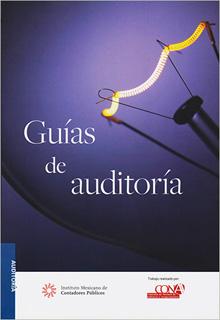 GUIAS DE AUDITORIA 2020 PROFESIONAL