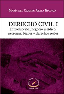 DERECHO CIVIL 1: INTRODUCCION, NEGOCIO JURIDICO,...