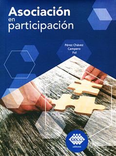 ASOCIACION EN PARTICIPACION 2019
