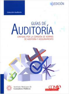 GUIAS DE AUDITORIA (PROFESIONAL)