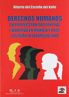DERECHOS HUMANOS: SU PROTECCION SUSTANTIVA Y...