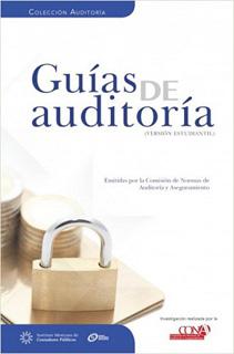 GUIAS DE AUDITORIA (VERSION PROFESIONAL)