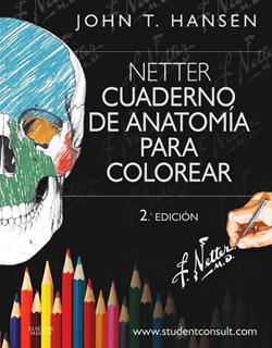 NETTER CUADERNO DE ANATOMIA PARA COLOREAR