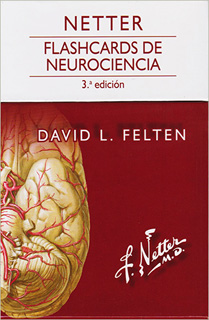 NETTER: FLASHCARDS DE NEUROCIENCIA