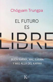 EL FUTURO ES LIBRE: BUEN KARMA, MAL KARMA Y MAS...