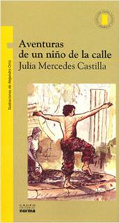 AVENTURAS DE UN NIÑO DE LA CALLE (SERIE AMARILLA)