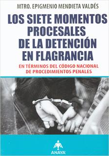 LOS SIETE MOMENTOS PROCESALES DE LA DETENCION EN...